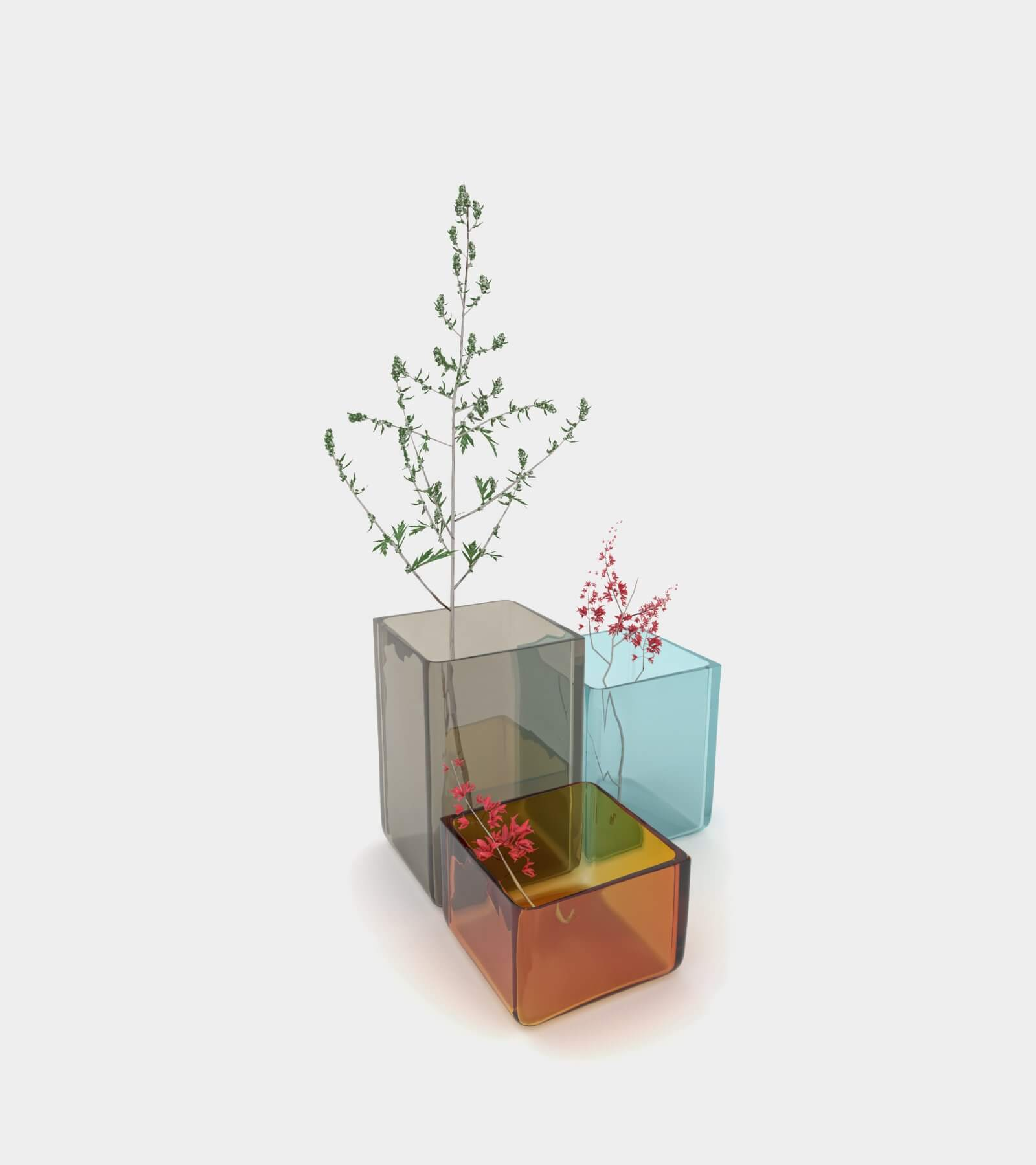 Coloured vases with plants 2 - 3D Model