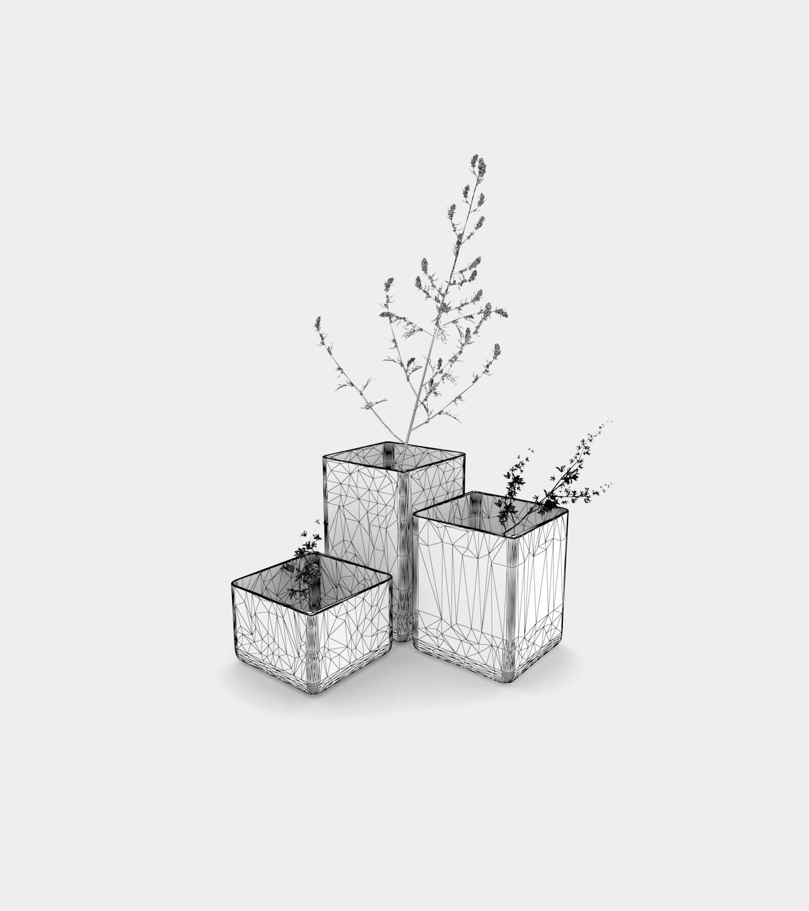Coloured vases with plants-wire-1 3D Model